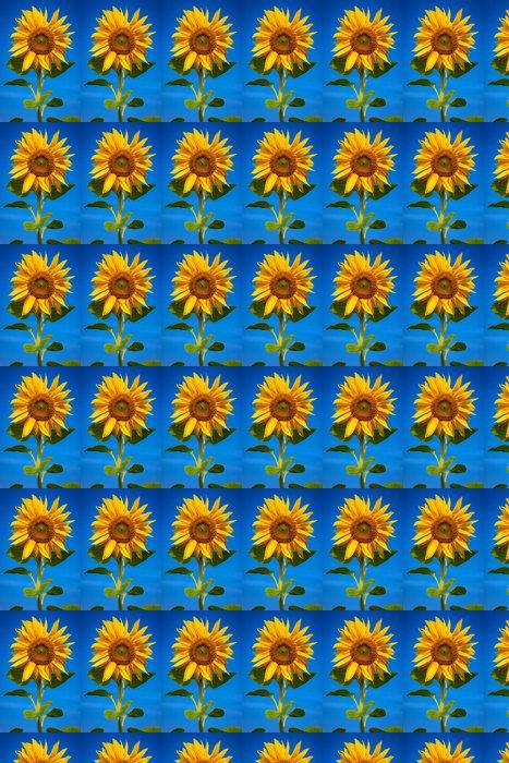 Vinylová Tapeta Slunečnice za slunečného dne s rosy na okvětních lístků - Témata