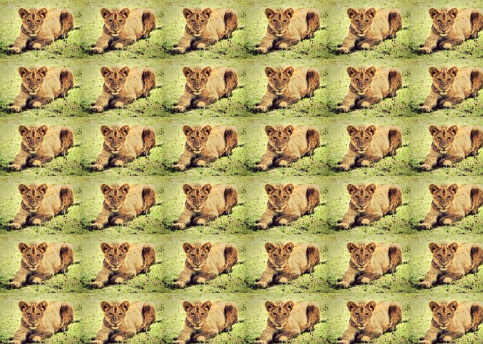 Vinylová Tapeta Malé lvíče portrét. Kráter Ngorongoro, Afrika - Témata