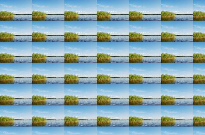 Vinylová Tapeta Forest Lake scenérie - Roční období