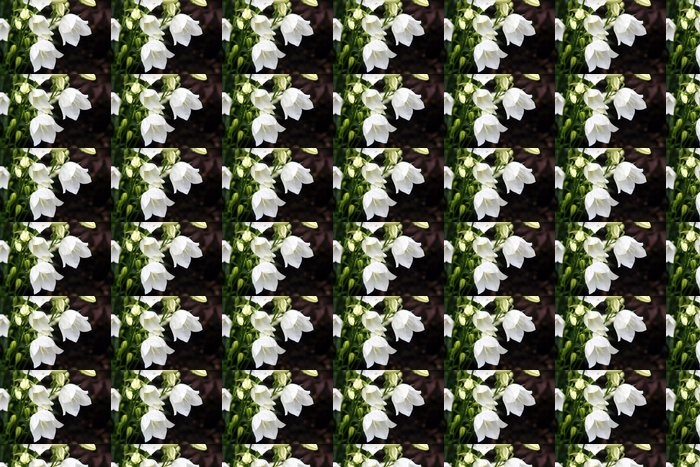 Vinylová Tapeta Bílá lilie - Domov a zahrada