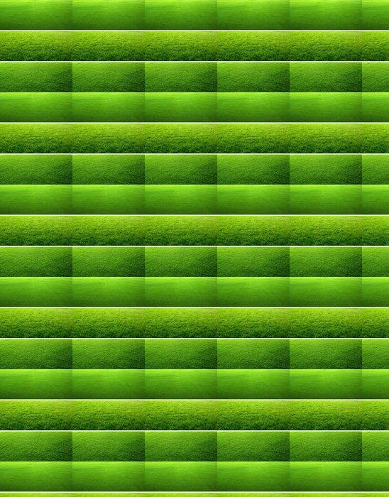 Vinylová Tapeta Zelená tráva pozadí - Roční období