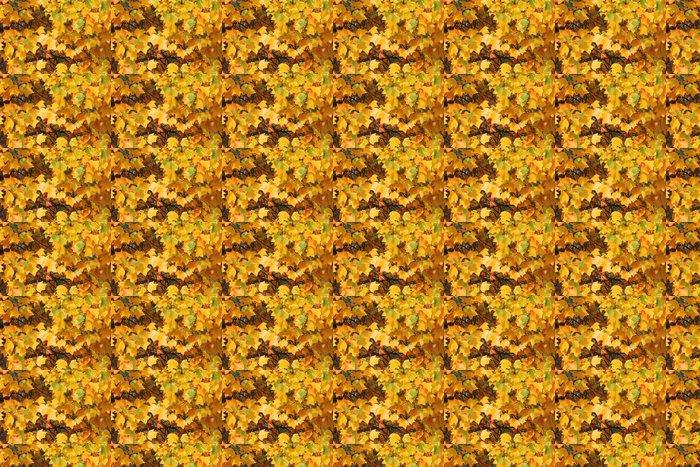 Vinylová Tapeta Golden říjen - barevné listí - Roční období