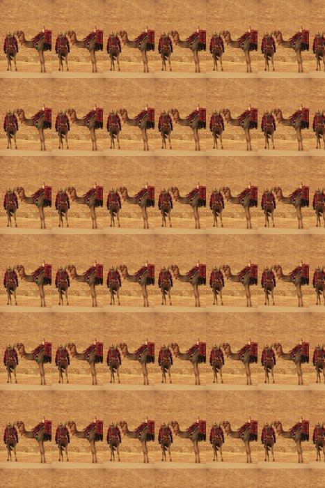 Vinylová Tapeta Velbloudi v pohotovosti pyramida Rachefova, Káhira - Afrika