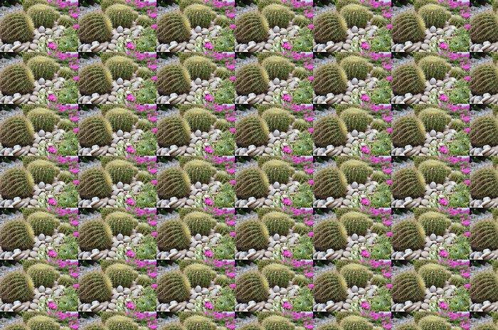 Vinylová Tapeta Globe tvar kaktus - Rostliny