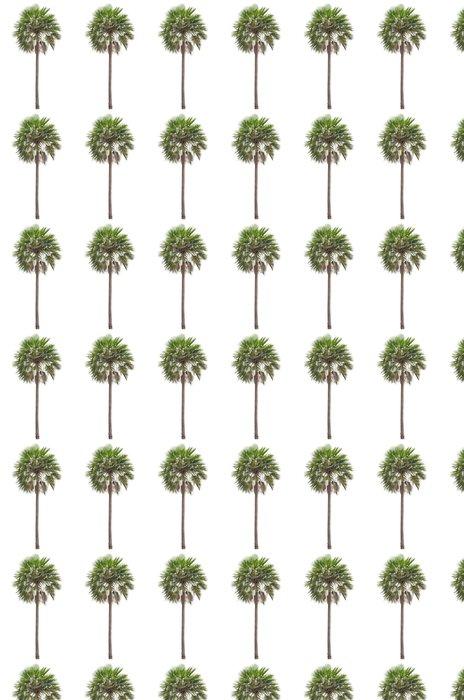 Vinylová Tapeta Wax palm (Copernicia Alba) Palma - Nálepka na stěny