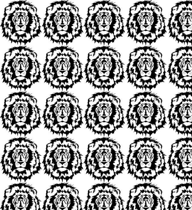 Vinylová Tapeta Lví hlavy black - Savci
