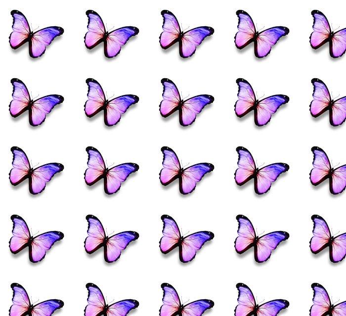 Papier peint à motifs vinyle Bleu, violet, papillon blanc, isolé sur blanc - Célébrations