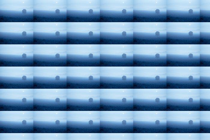 Vinylová Tapeta Louky v mlze - Nebe