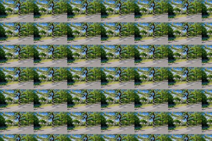 Vinylová Tapeta Jižní domy - Amerika