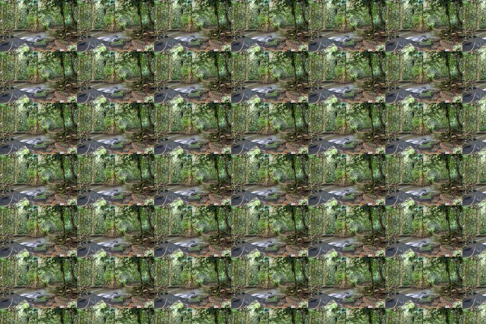 Vinylová Tapeta Uvnitř afrického deštného pralesa I - Lesy