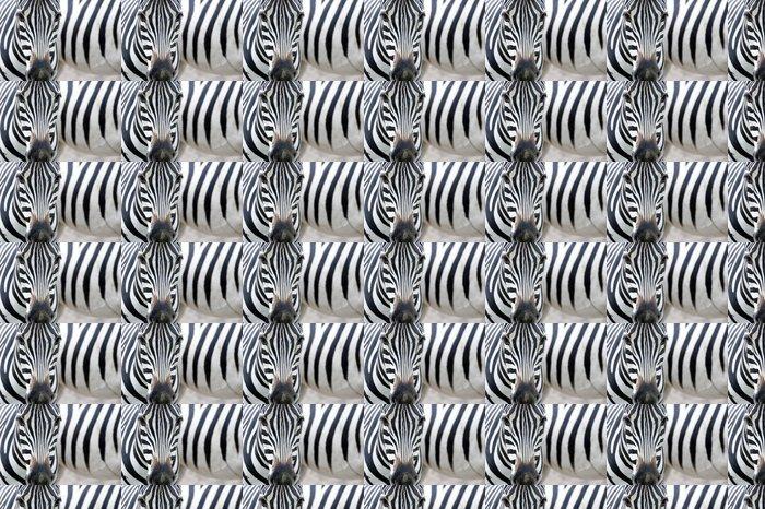 Vinylová Tapeta Portrét zebra - Témata