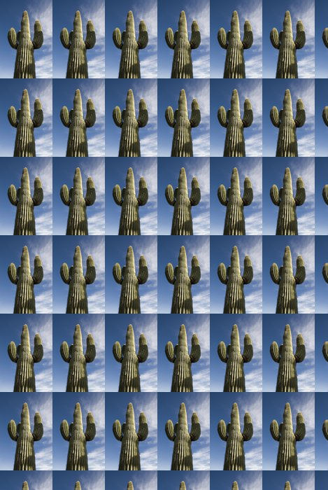 Vinylová Tapeta Saguaro kaktus Arizona - Prázdniny
