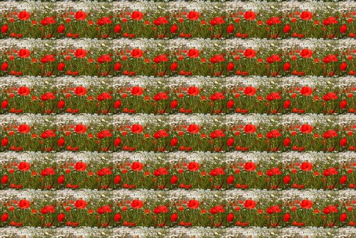 Vinylová Tapeta Červené vlčí máky - Květiny