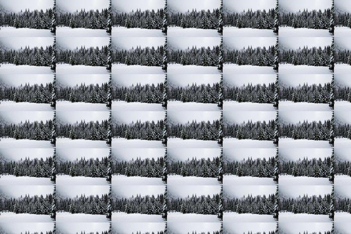 Vinylová Tapeta Zimní období - Roční období