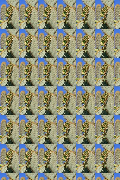 Vinylová Tapeta Cactus zvony 2 - Rostliny