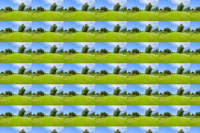 Vinylová Tapeta Golf - Individuální sporty