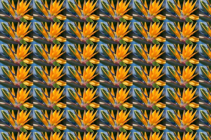 Vinylová Tapeta Bird of paradise květiny - Květiny