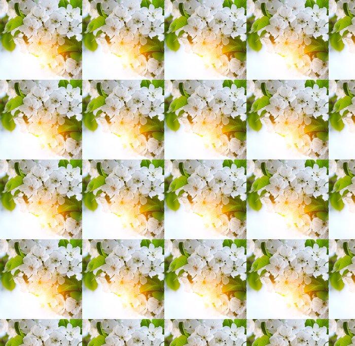 Vinylová Tapeta Třešeň větvička v květu - Květiny