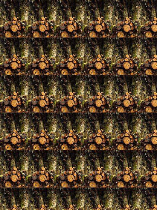 Vinylová Tapeta Padající kmen stromu - Ekologie