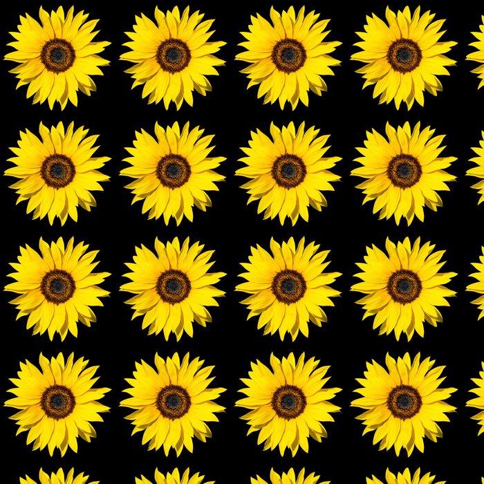 Vinylová Tapeta Slunečnice izolované - Témata