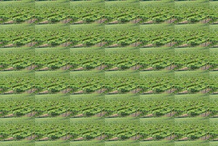 Vinylová Tapeta Vinice merlot - Zemědělství