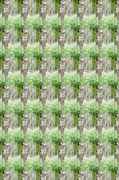 Vinylová Tapeta Kmeny stromů v březovém lese a divoké květiny, close-up - Břízy