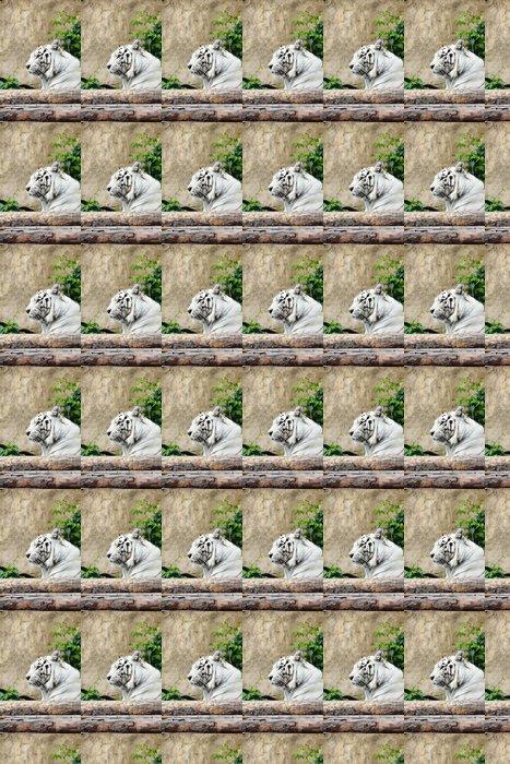 Vinylová Tapeta White tiger - Savci