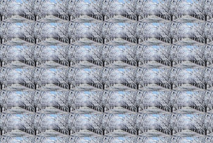 Vinylová Tapeta Ice Palace - Příroda a divočina