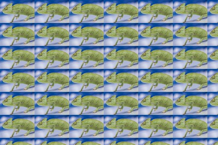 Vinylová Tapeta Zelená chameleon - Témata