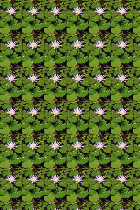 Vinylová Tapeta Leknín se stínem - Květiny