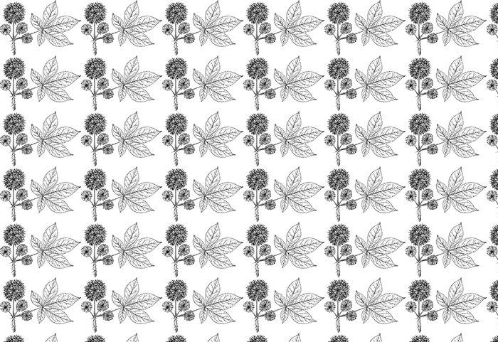 Vinylová Tapeta Pobočka rostlin eleuterococcus - Rostliny