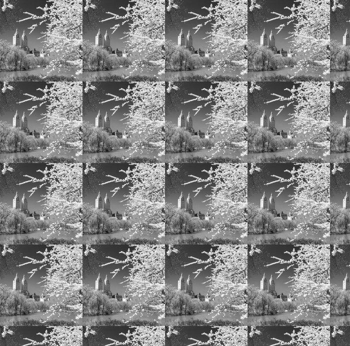 Vinylová Tapeta Central Park, New York City. USA. - Americká města