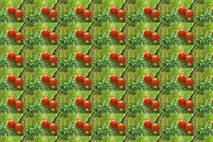 Vinylová Tapeta Rajské jablíčko - Témata