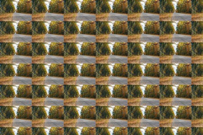 Vinylová Tapeta Fall Country Road - Stromy