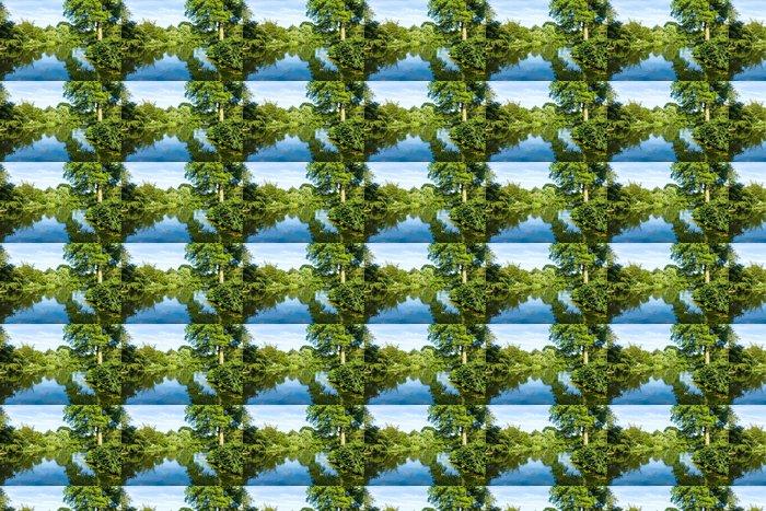 Vinylová Tapeta Klidný rybník odráží svěží zelené Woodland Park - Roční období