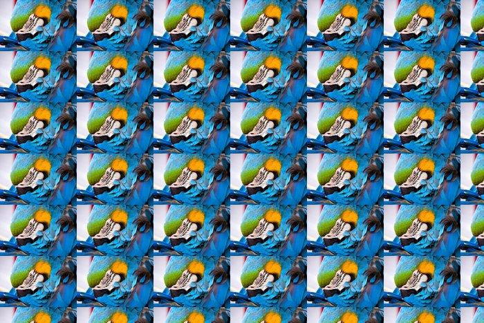 Vinylová Tapeta Šarlatové macaws, papoušek - Témata