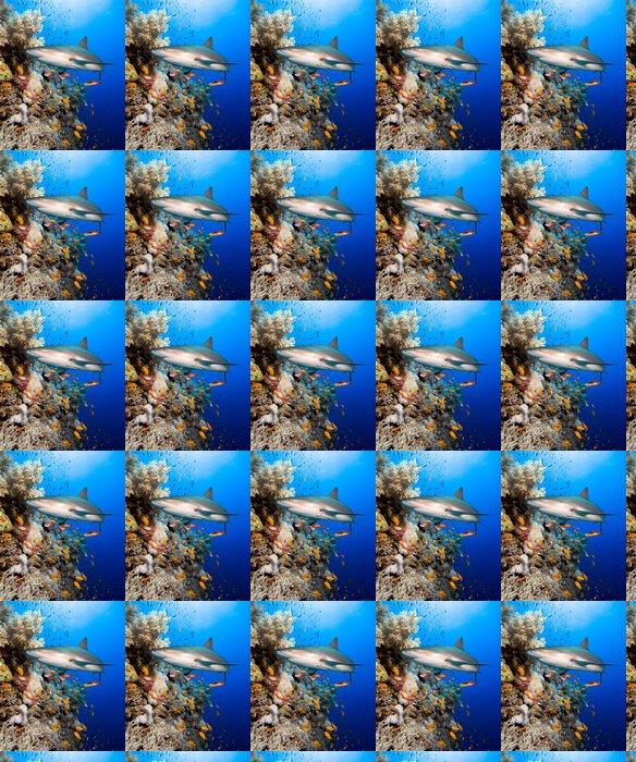 Coral reef with shark Vinyl Wallpaper - Sharks