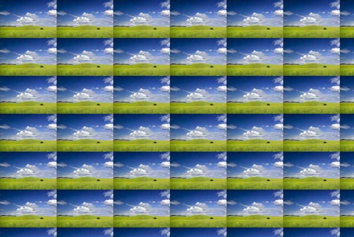 Vinylová Tapeta Letní krajina. Evropa, Polsko. Adobe RGB (1998). - Zemědělství