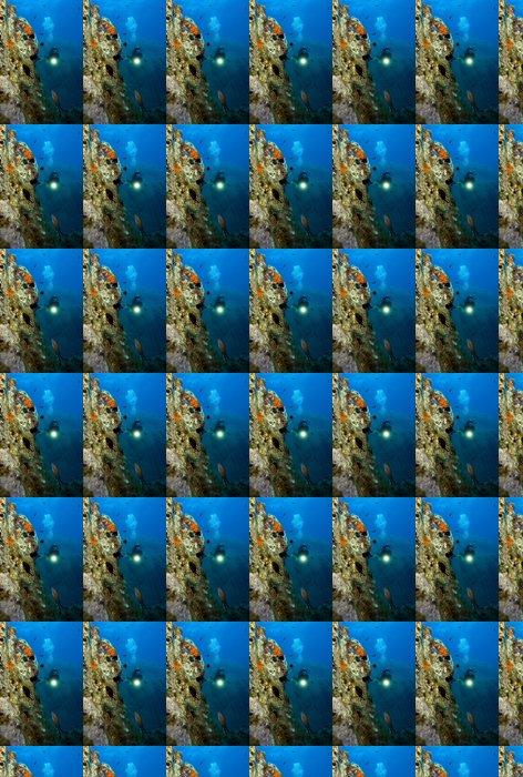 Vinylová Tapeta Podvodní svět. Divers a ryby - Vodní sporty