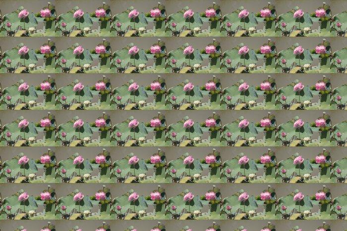 Vinylová Tapeta Růžová lotosový kvetou. - Květiny