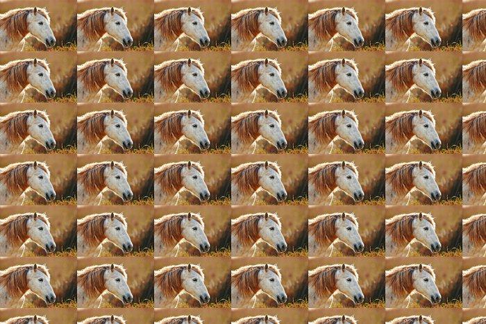 Vinylová Tapeta Portrét bílý kůň Camargue v podsvícení - Témata