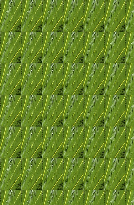 Vinylová Tapeta Tropická rostlina - Rostliny
