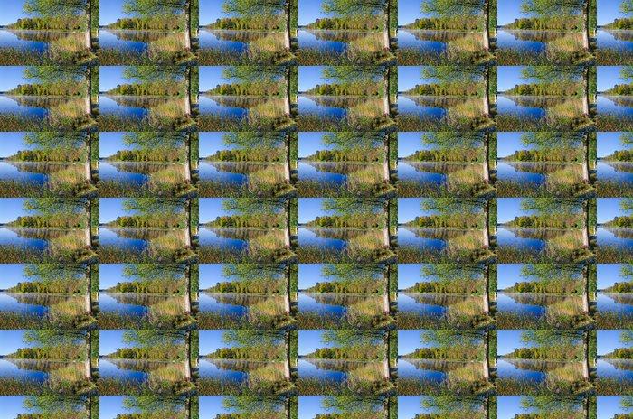 Vinylová Tapeta Krásná Švédské jezero krajina v podzimních barvách - Roční období