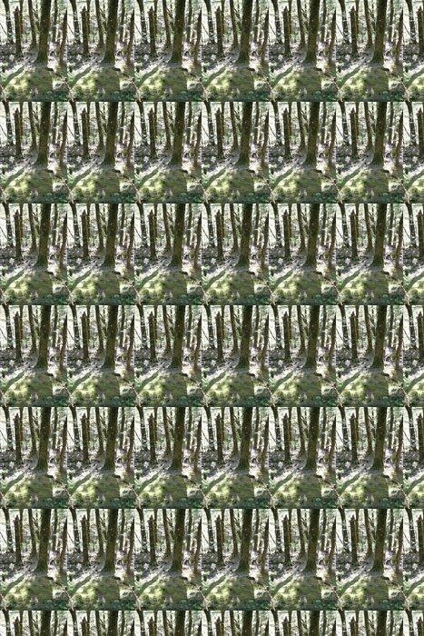 Vinylová Tapeta Stínu stromů - Oceánie