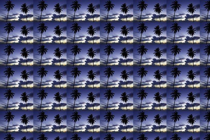 Vinylová Tapeta Dvě černé dlaň na noční pláži - Voda