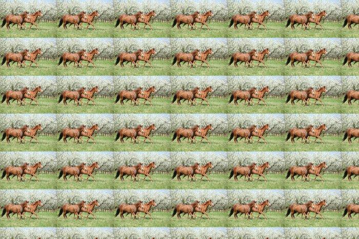 Vinylová Tapeta Dvě čtvrtletí koně běží v přední části kvetoucích stromů - Savci