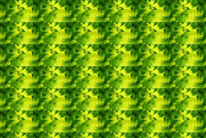 Vinylová Tapeta Zelený javorový listí - Témata