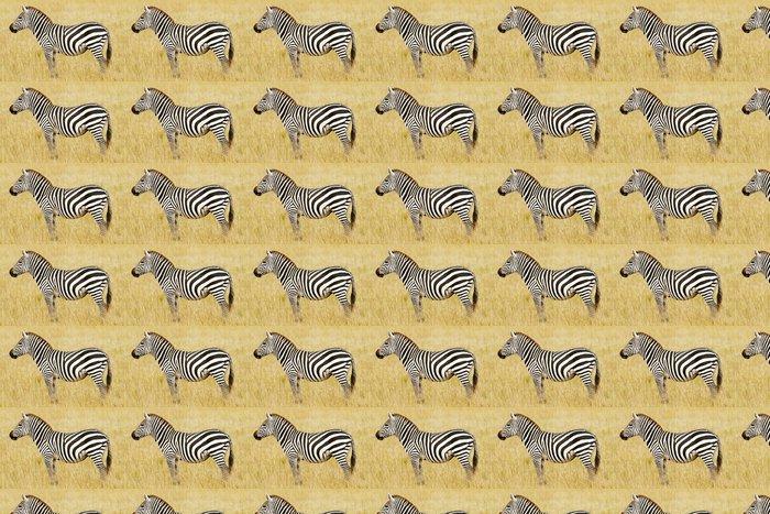 Vinylová Tapeta Zebra na Masai Mara v Africe - Témata
