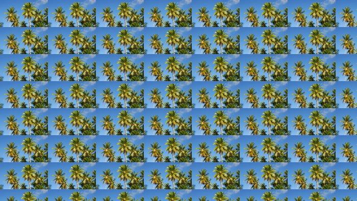 Vinylová Tapeta Forêt de Cocotiers - Prázdniny