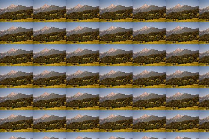 Vinylová Tapeta Harmonische Landschaft mit Bergen in Tirol bei Grins - Hory